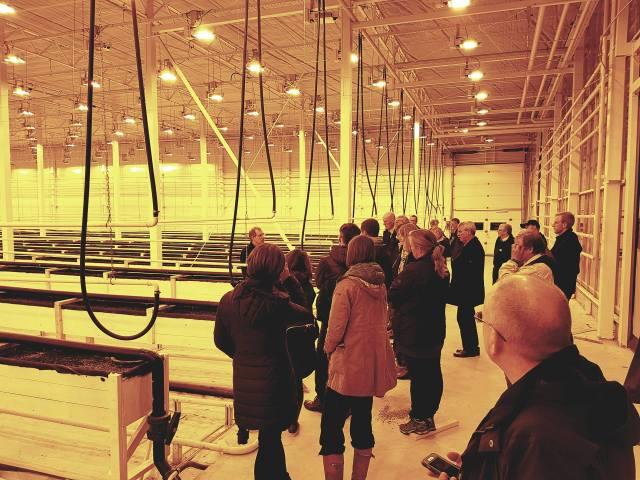 Bilden visar företagsledaren Daniel Brännström demonstrerar växthuset för den planerade tomatodlingen.