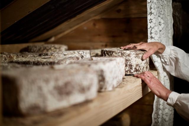 Bild på ostar som läggs på vila