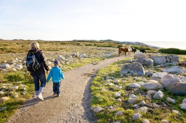 Vuxen och barn går längs en vandringsled