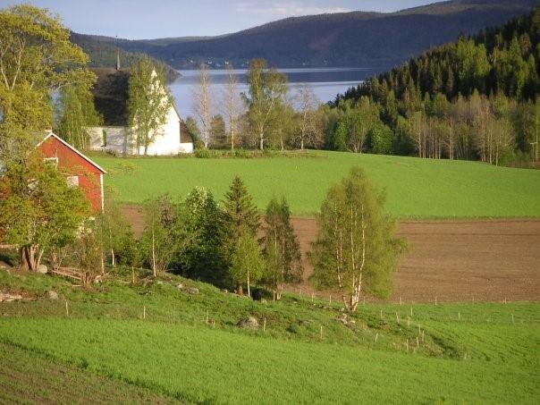 Foto över en gård med åkrar i framkant och en sjö i bakkant.